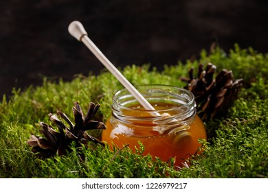Honey stick in a jar of fragrant honey standing on a forest moss carpet. Side view.