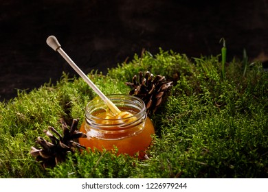 Honey stick in a jar of fragrant honey standing on a carpet of forest moss and cones. Side view.