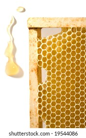 honeycomb in frame and drop isolated on white