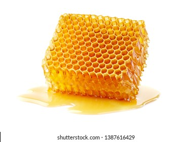 Honeycomb with honey drop in closeup
