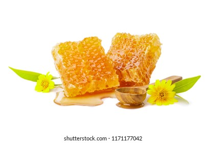 Honeycomb with honey in the spoon and flower isolate on white background, bee products by organic natural ingredients concept