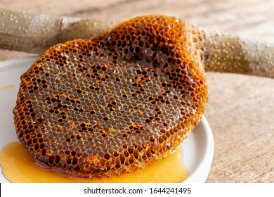 Honeycomb pieces close-up on the white plate with fresh liquid honey golden color beautiful from a bee hive. Food and healthy concept.