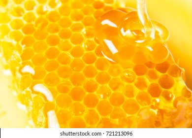 Honeycombs in closeup, Honey, Honeycomb, Honey Bee.