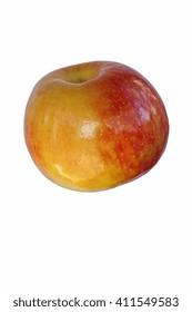 Honeycrisp apple (Malus domestica Honeycrisp). Hybrid between Macoun apple and Honeygold apple. Image of single apple isolated on white background