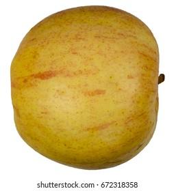 Honeycrisp Apple on white background - side, with stem 2.