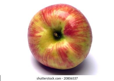 honeycrisp variety of apples crisp juicy and sweet a hybrid cross between macoun and honey gold grown in canada