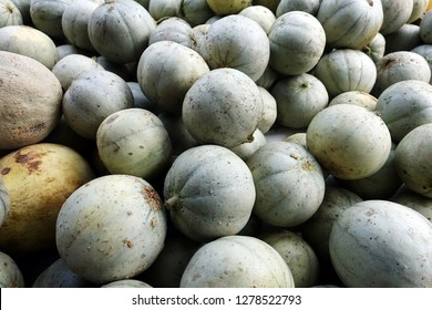 Honeydew melons, or honey melons, full in bucket in a fruit market.