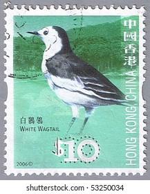 HONG KONG, CHINA - CIRCA 2006: A stamp printed in Hong Kong shows white wagtail, series devoted to the birds, circa 2006