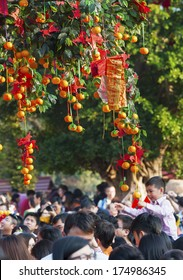 HONG KONG , CHINA - FEB. 02 : Lam Tsuen wishing tree on Feb. 02 , 2014 in Hong Kong. Tourists wrote wishes on joss paper, tied to an orange, then threw them up to hang in to make wish come true.