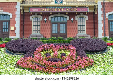 Hong Kong Disneyland on February 07, 2015 : Hong Kong Disneyland Built in 2012,Is the world's five Disneyland and front castle with this is tree as Mickey Mouse