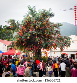 HONG KONG - FEBRUARY 14: Lam Tsuen wishing trees on February 14, 2013 in Hong Kong, China. It is one of the popular shrines and believed the wishes will come true if it can hung onto the tree branches.