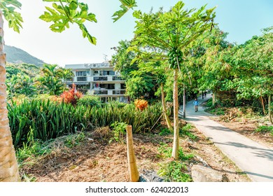Hong Kong - January 25, 2016: Family Walk Trail on Lamma Island is popular tourist attraction and destination in Hong Kong. Scenic sunny day landscape of Yung Shue Wan village countryside