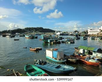 Hong Kong marina harbor with many small boats