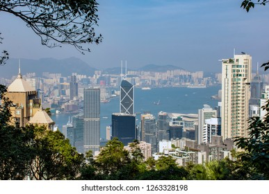 Hong Kong/China - October 27, 2017: View through the trees of Hong Kong skyline, Victoria Harbor, Kowloon Bay, and Causeway Bay. Residential skyscrapers and commercial buildings