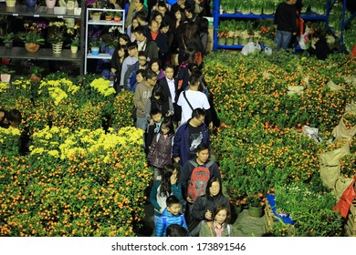HONG KONG,JANUARY 29: the CNY flower market inTsuen Wan park in hong kong on 29 Jan. 2014. In cny tradition, people will go to flower market to shopping for good luck