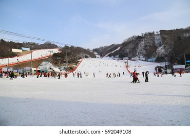 HONGCHEON, SOUTH KOREA - 10 FEB  2017 : View at Vivaldi Park Ski World in Hongcheon city, Gangwon Province, South Korea