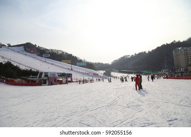 HONGCHEON, SOUTH KOREA - 10 FEB  2017 : View at Vivaldi Park Ski World in Hongcheon city, Gangwon Province, South Korea