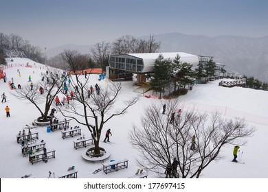 HONGCHEON, SOUTH KOREA - DECEMBER 14: View at  Daemyung Vivaldi Park Ski World in Hongcheon city, Gangwon Province,  South Korea on December 14, 2013.