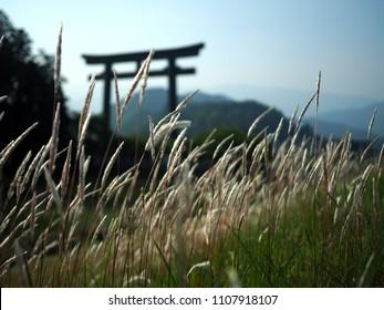 Hongu with Otorii, the largest Torii shrine gate in the world, at the entrance to the Oyunohara, Tanabe, Wakayama, Kii Peninsula, Japan, on the Kumano Kodo hiking trail, UNESCO World Heritage Site