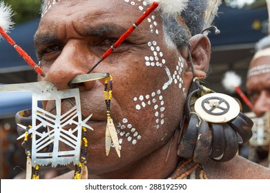 Honiara, Solomon Islands, June 21, 2014, a traditional decorated dancer from Temotu looks in the lens. He is decorated with shell nose ornament, nose feathersticks, turtle shell earrings, white paint