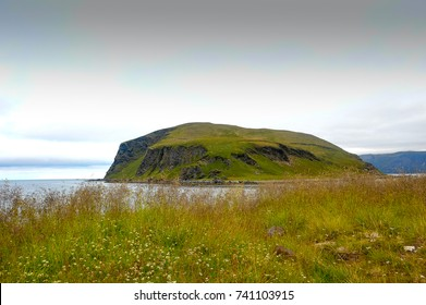 Honningsvag, Mageroya Island - Nordkapp, Norway. View across sea to Nordvagholmen island.  Summer meadow scene, long grass, green slopes, rocky coastline