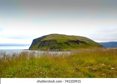 Honningsvag, Mageroya Island - Nordkapp, Norway. View across sea to Nordvagholmen island.  Summer meadow scene, long grass, green slopes, rocky coastline