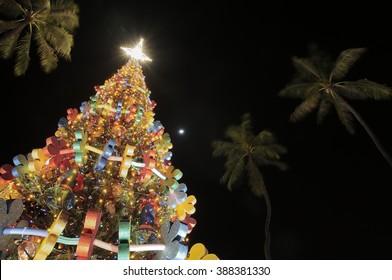 Honolulu Christmas