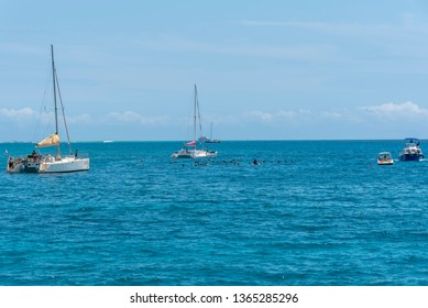 Honolulu, Hawaii - March 30, 2019: Tourist snorkel boats off the coast Honolulu one to Waikiki beach. This famous spot close to the Hawaiian Hilton is popular for spotting turtles while snorkelling.