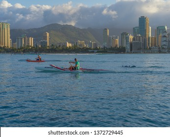 Honolulu, Hawaii, USA.  Apr. 17, 2019.  Two Hawaiian outrigger canoe paddlers accompanied by Pacific spinner dolphins as they paddle through Waikiki.