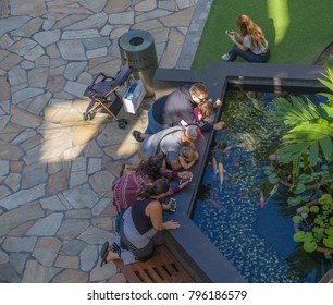 Honolulu, Hawaii, USA, Jan. 18, 2018.  Overhead view of visitors to the new Ala Moana Shopping Center enjoying one of the many Koi fishponds.