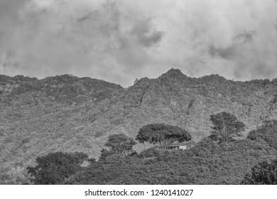 Honolulu, Hawaii, USA.  Nov. 25, 2018.  Manoa Valley Rain Forest above Honolulu.