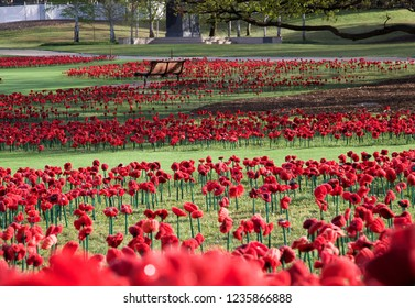Honour Their Spirit.  62,000 hand made poppies created from people across the world to honour those who fell in the First World War.  Australian War Memorial, Canberra, Australia 2018