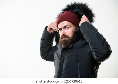 Hood adds warmth and weather resistance. How to choose best winter jacket. Man bearded stand warm jacket parka isolated on white background. Winter season menswear. Weather resistant jacket concept.