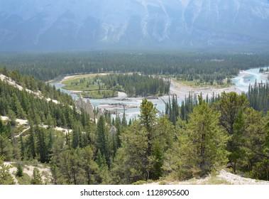 Hoodoos area, Banff National Park