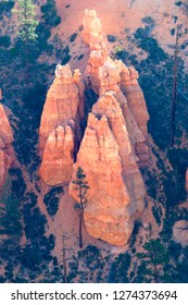 """Hoodoos, Bryce Canyon National Park, Utah, USA. Hoodoos are tall skinny spires of rock that protrude from the bottom of arid basins and """"broken"""" lands."""