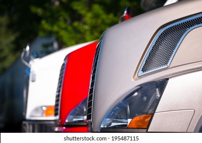 Hoods modern trucks of different colors with chrome grilles and prominent headlights standing in a row against a blurred background of green trees