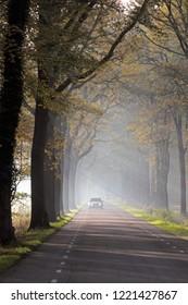 Hoogeveen, the Netherlands- November 4, 2018: Hoogeveenseweg in fog in the morning light