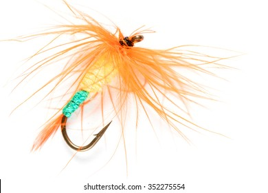 hook artificial fly feather on a white background