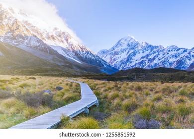 Hooker Vallay Track on golden grass field with Aoraki Mount Cook, New Zealand