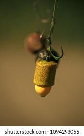 Hooks with fishing bait, chumming. Fishhooks on line on blurred background. Fishing, angling, catching fish, chum
