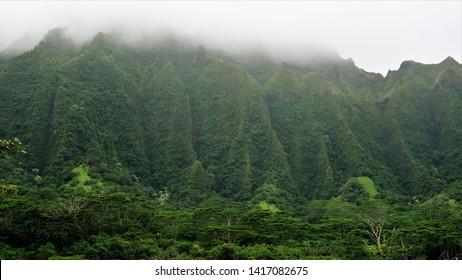 Ho'omaluhia Botanical Park views of Ko'olau mountains, gardens, benches, entrance and grounds