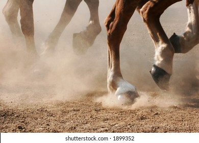 The hooves of horses running through dirt.