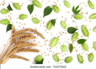 hop cones with ears of wheat isolated on white background close-up. Top view