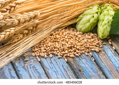 hop cones, grain barley, barley ears, lying on a wooden old painted table
