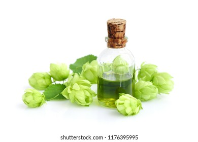 Hop cones (Humulus) with medicinal plant extract in glass bottle isolated on white background