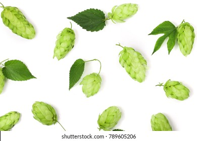 hop cones with leaf isolated on white background close-up. Top view