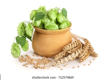hop cones in a wooden bowl with ears of wheat isolated on white background close-up