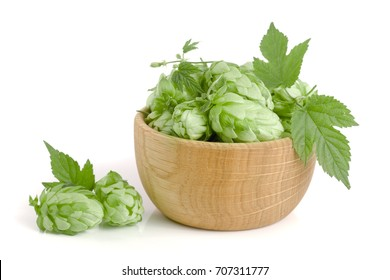 hop cones in a wooden bowl with leaf isolated on white background close-up. Top view