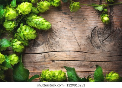 Wallpaper Hops Stock Photos Images Photography Shutterstock