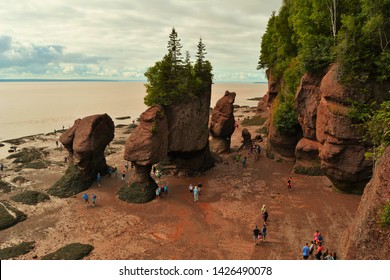 Hopewell Cape, New Brunswick - July, 2018:  Tourists walk on the ocean floor at low tide among the flowerpot rocks.
